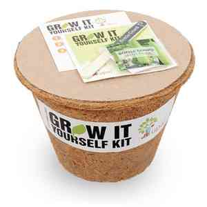 Grow it Yourself Kit