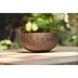 Jumbo Classic Coconut Bowls