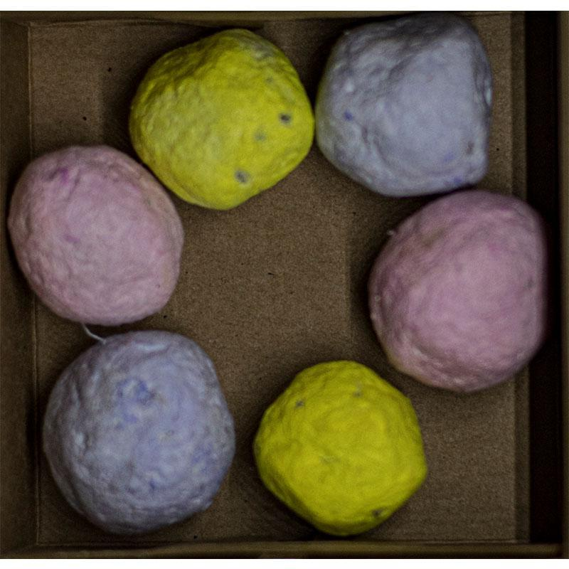 Natural Seed Bombs
