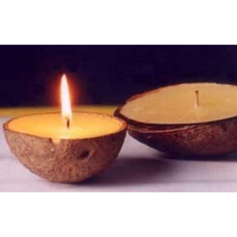Sandalwood Hand-Poured Coconut Shell Diya