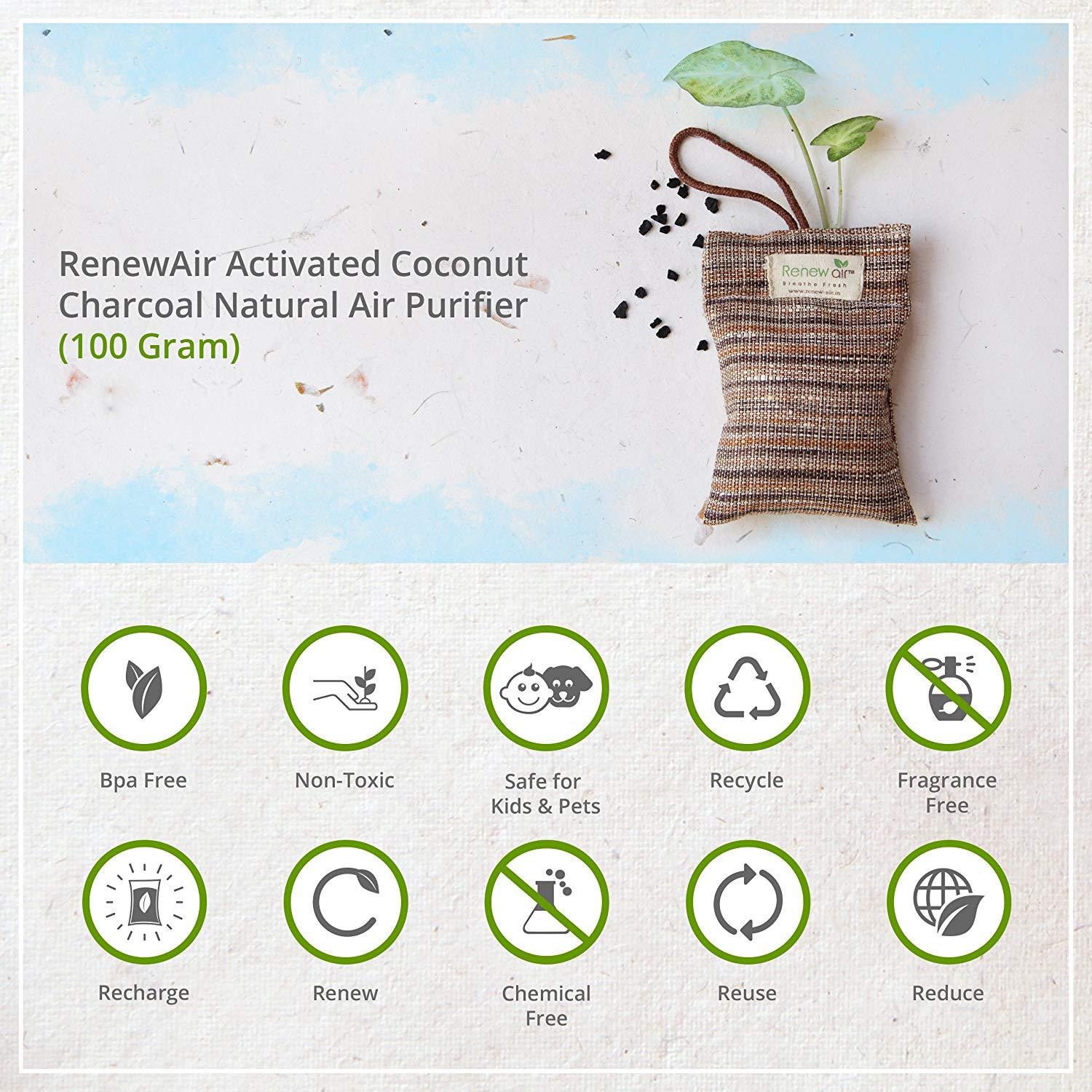 Natural Air Purifier with Activated Charcoal
