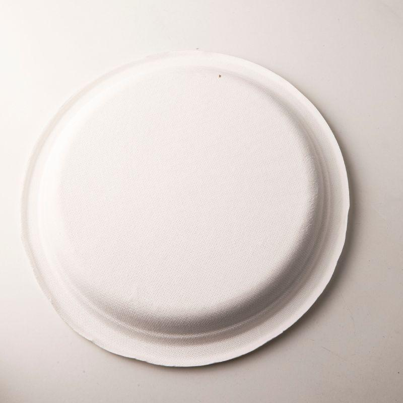 Biodegradable Bagasse Plates