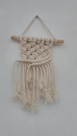 Mini Beauties Macrame Wall Hangings