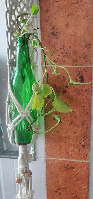 Macrame Bottle Plant Holder