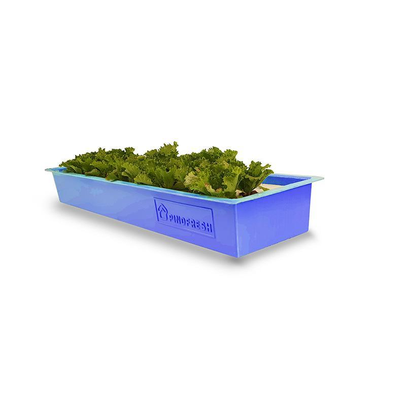 Hydroponic/ Aquaponic Growing Home Gardening Kit