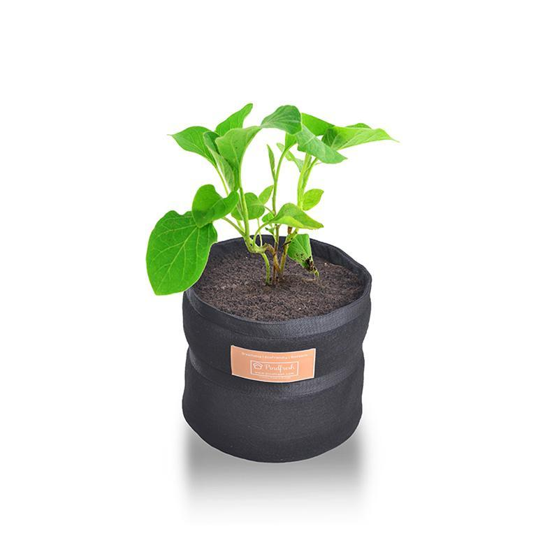 Grow Bag made of Eco-Friendly Biofabric