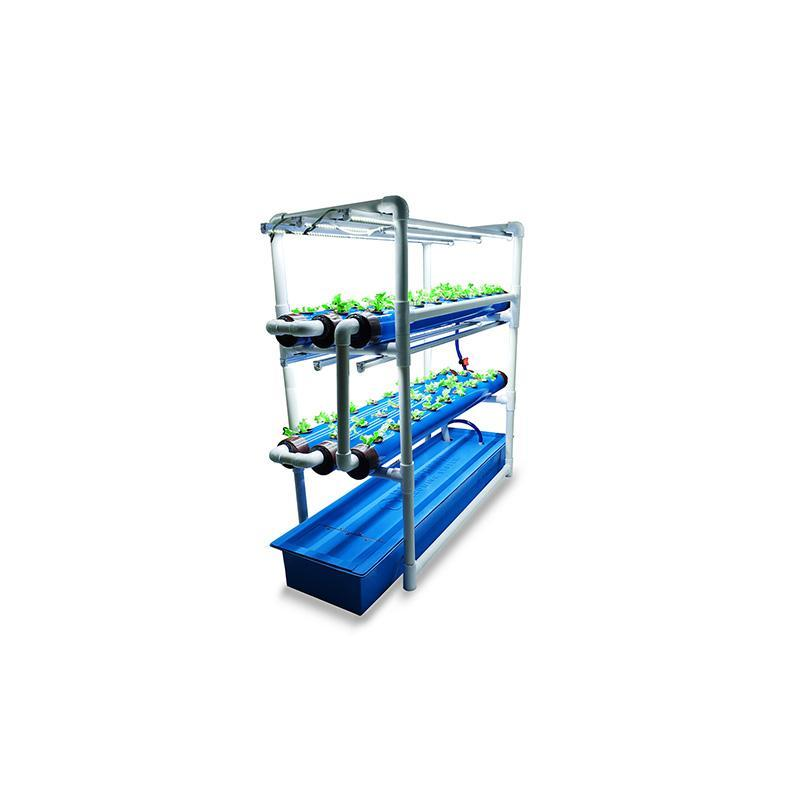 Hydroponic Growing Kit for In-House Farming