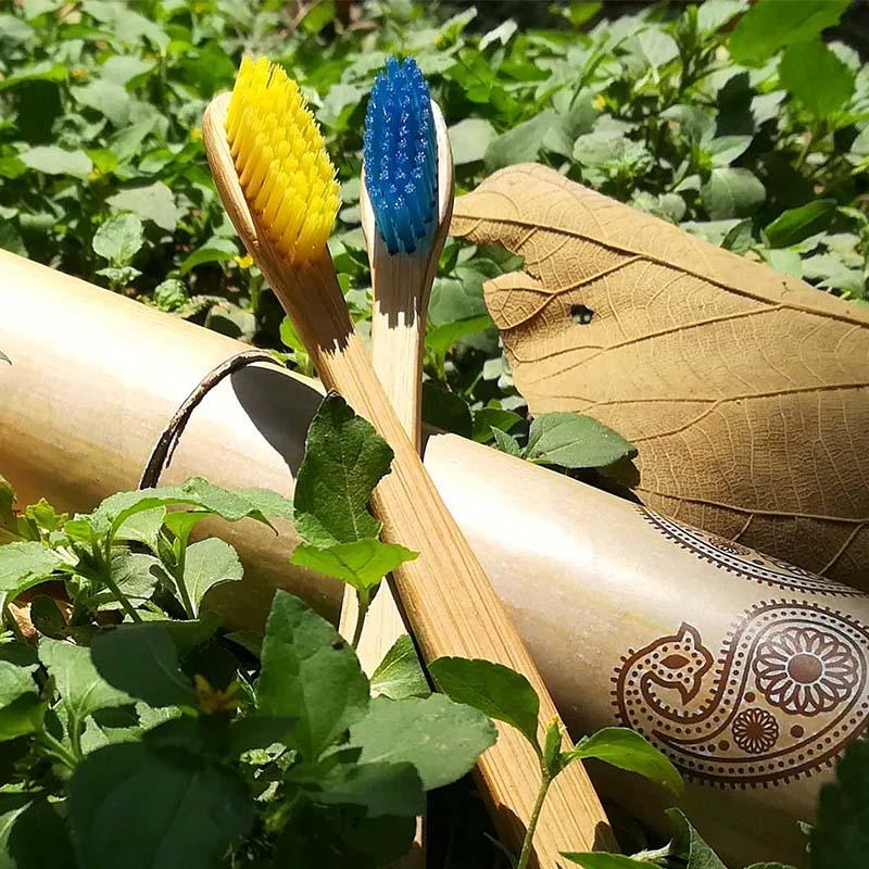 Biodegradable Bamboo Toothbrushes
