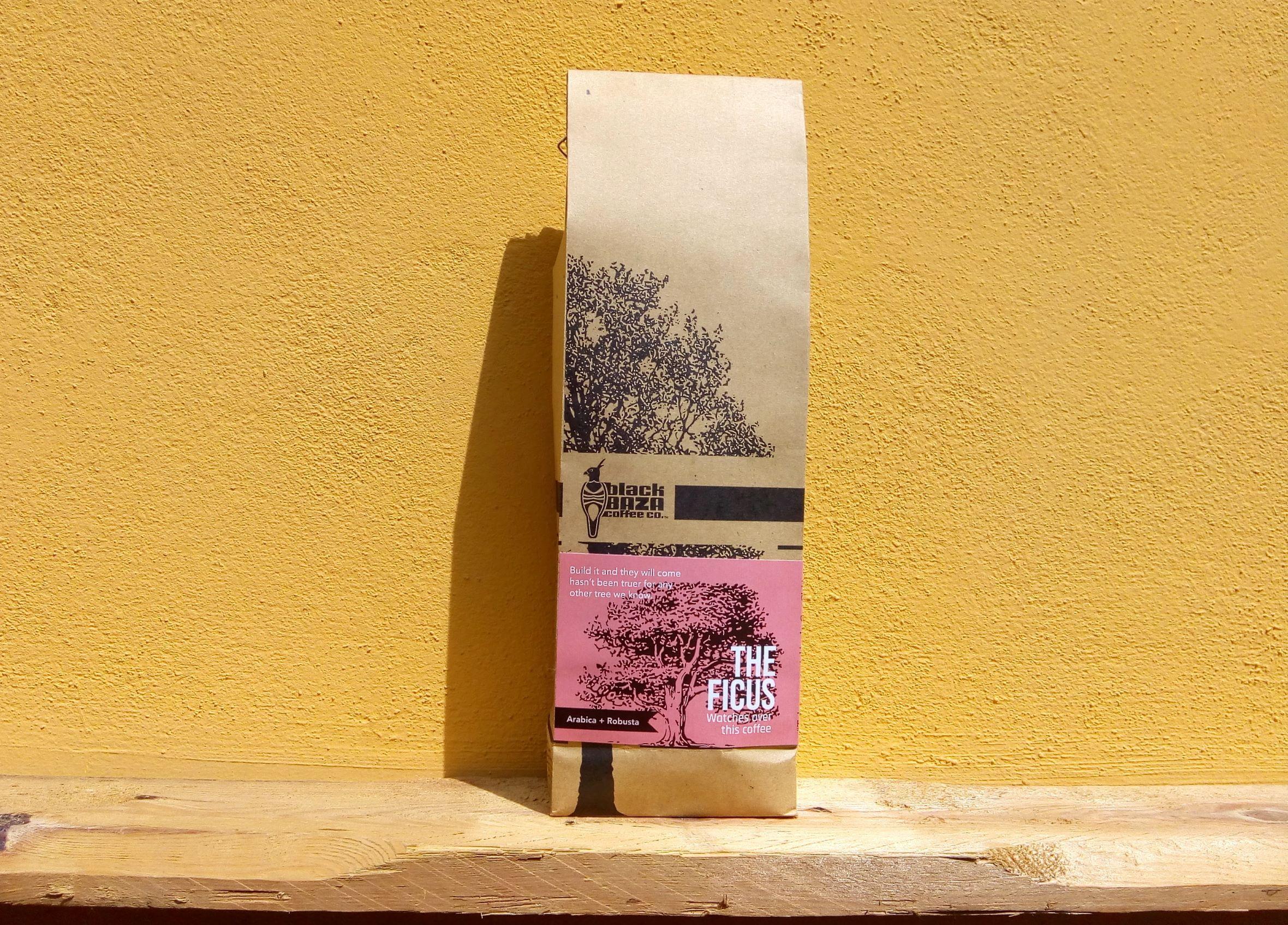 The Ficus Coffee