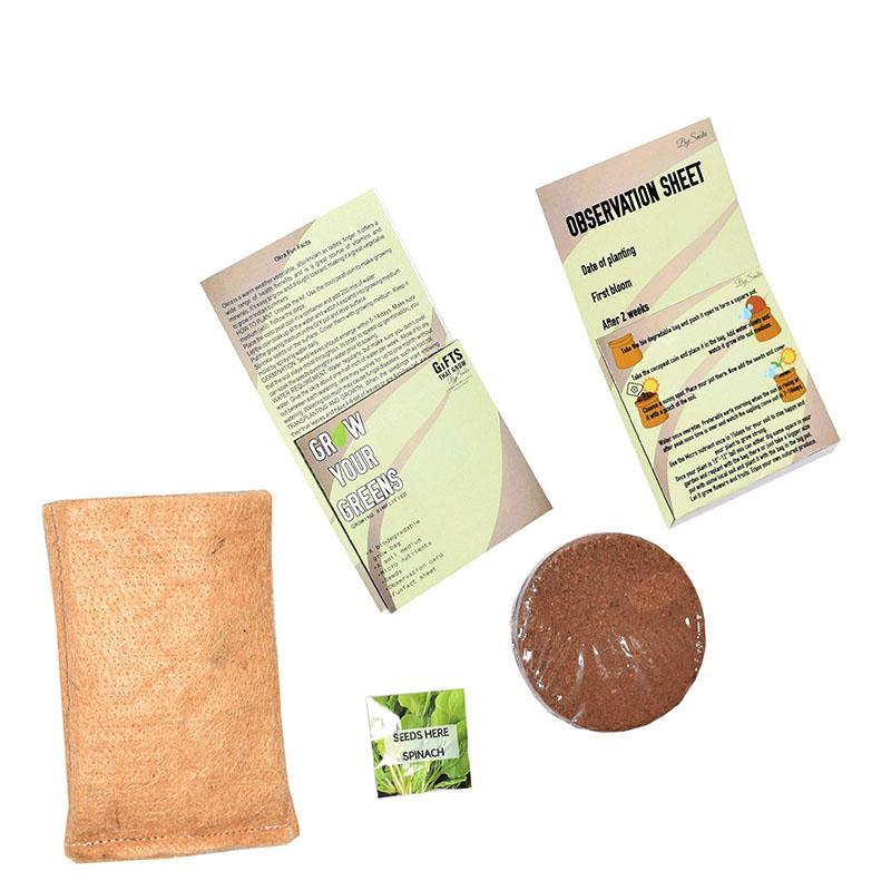 Grow Your Greens Spinach Kit