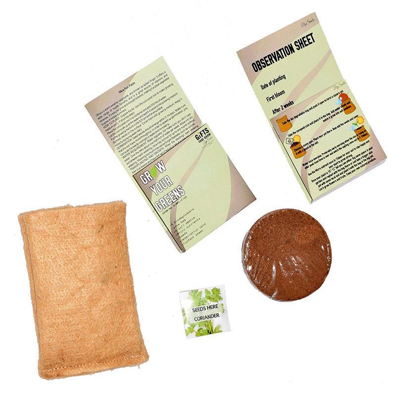 Grow Your Greens Coriander Kit