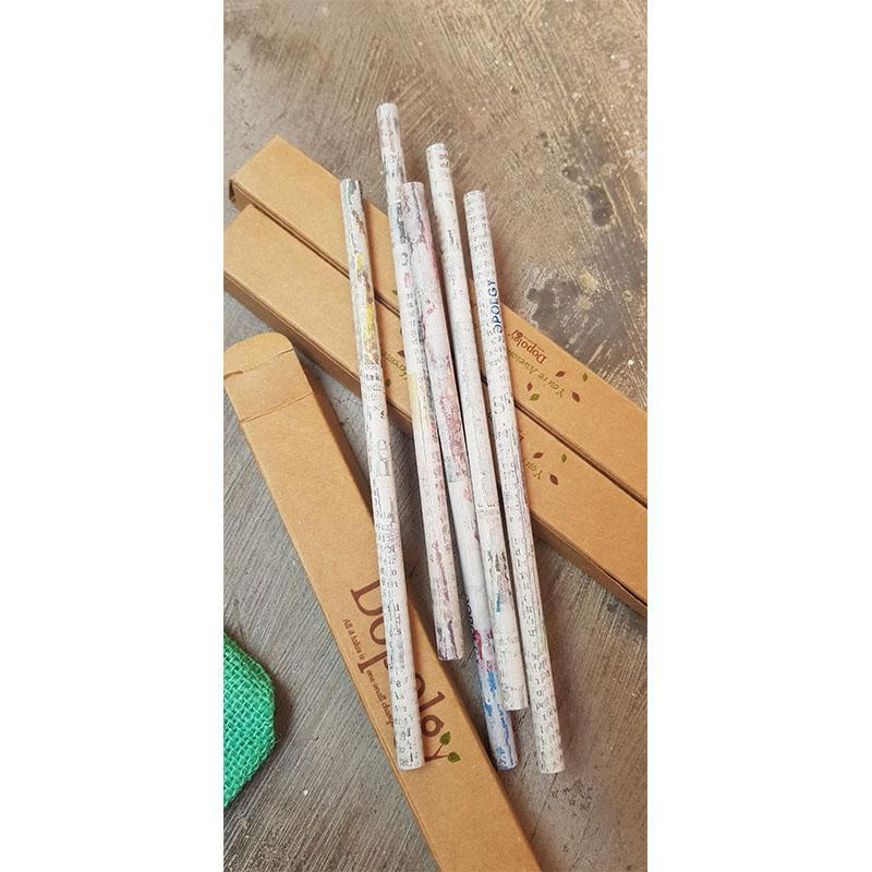 Assorted Recycled Newspaper & Plantable Seed Pencils