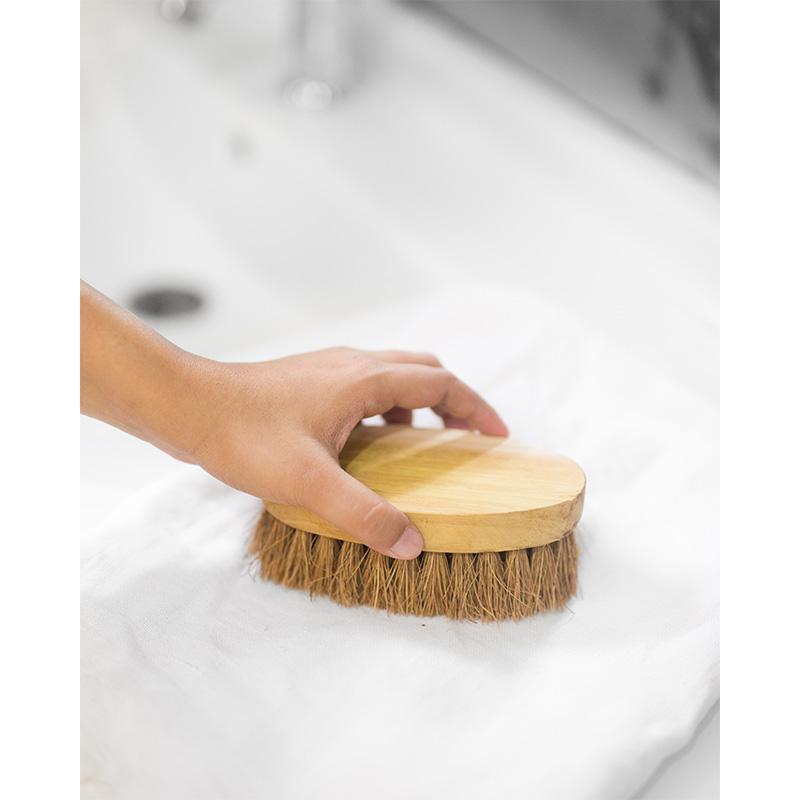 Coir Oval Washing Brush