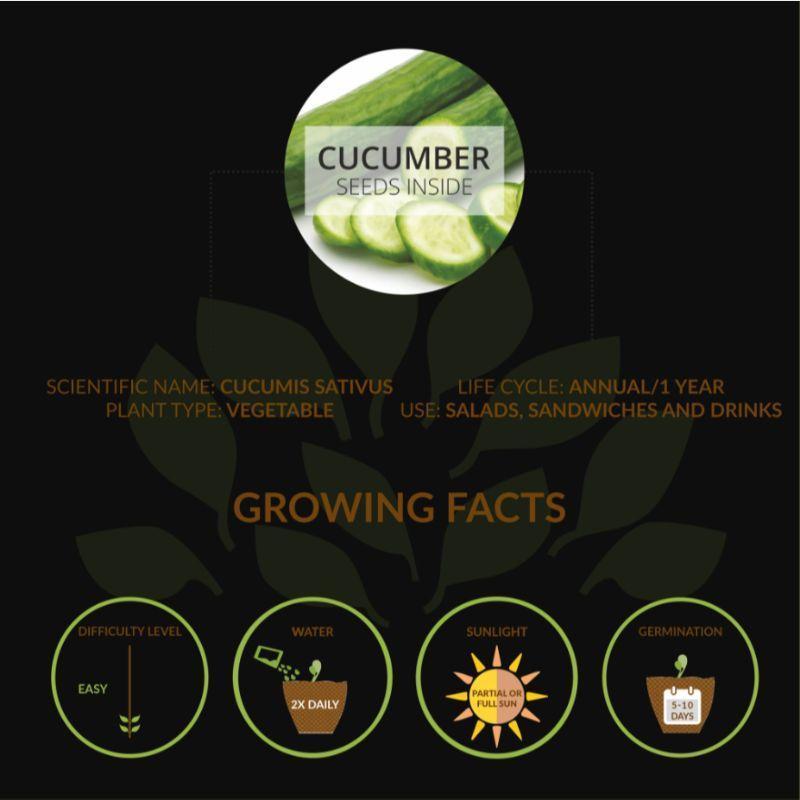 Small Cucumber Grow Kit