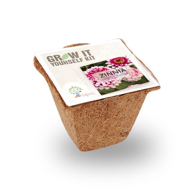 Small Zinnia Grow Kit