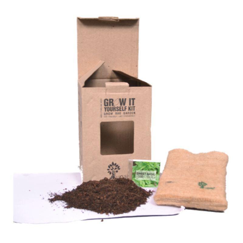 Herb Basil Garden Kit