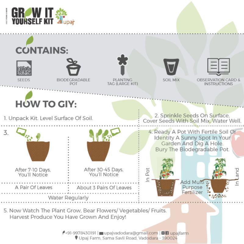 Vegetables & Flowers Grow Kit