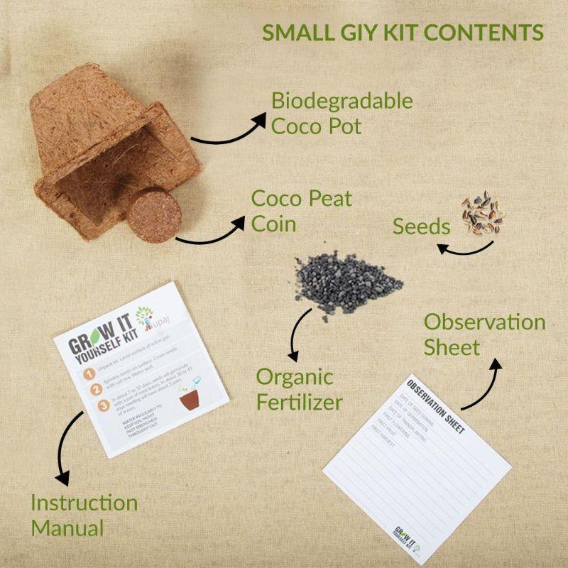 Grow it Yourself Garden Kit