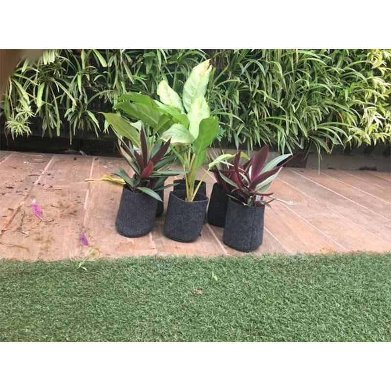 Recycled Black Grow Bags for Gardening