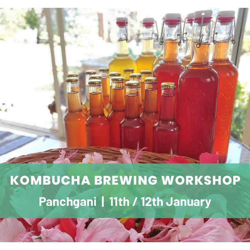 Kombucha Brewing Workshop