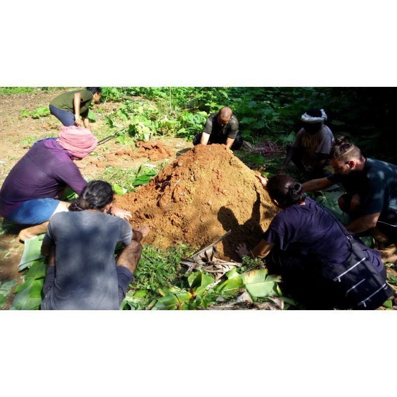 3- Day Intensive Permaculture Workshop, Auroville TN