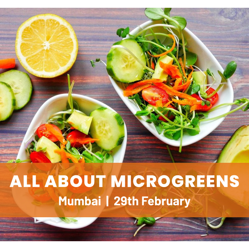 All About Microgreens Workshop