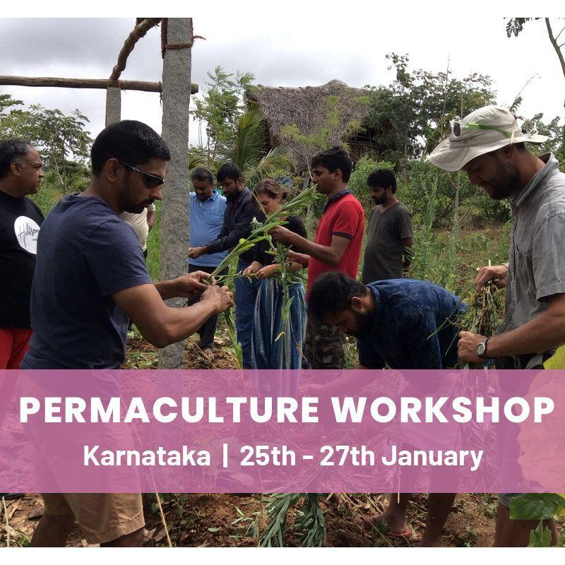 Introduction to Permaculture & Regenerative Design