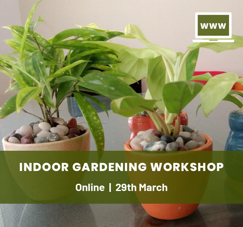 Online Workshop On Indoor Gardening