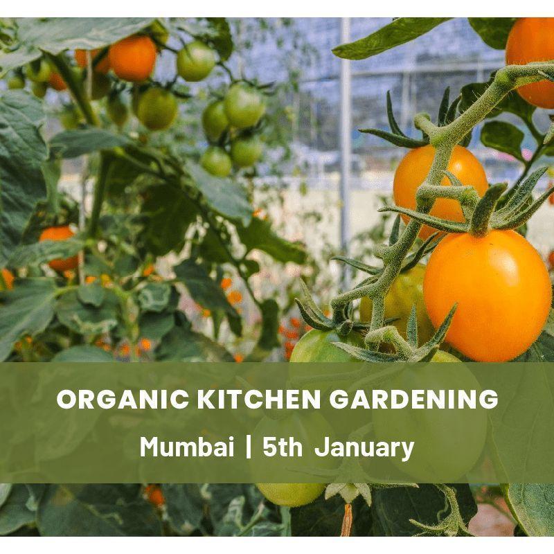 Organic Kitchen Gardening Course Workshop