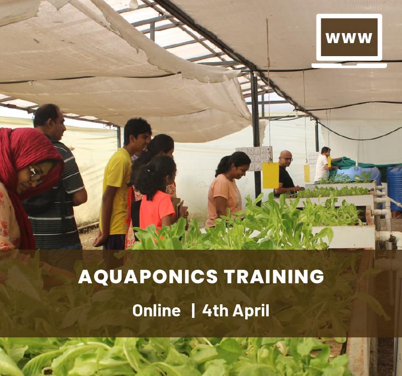 Online Aquaponics Training Course