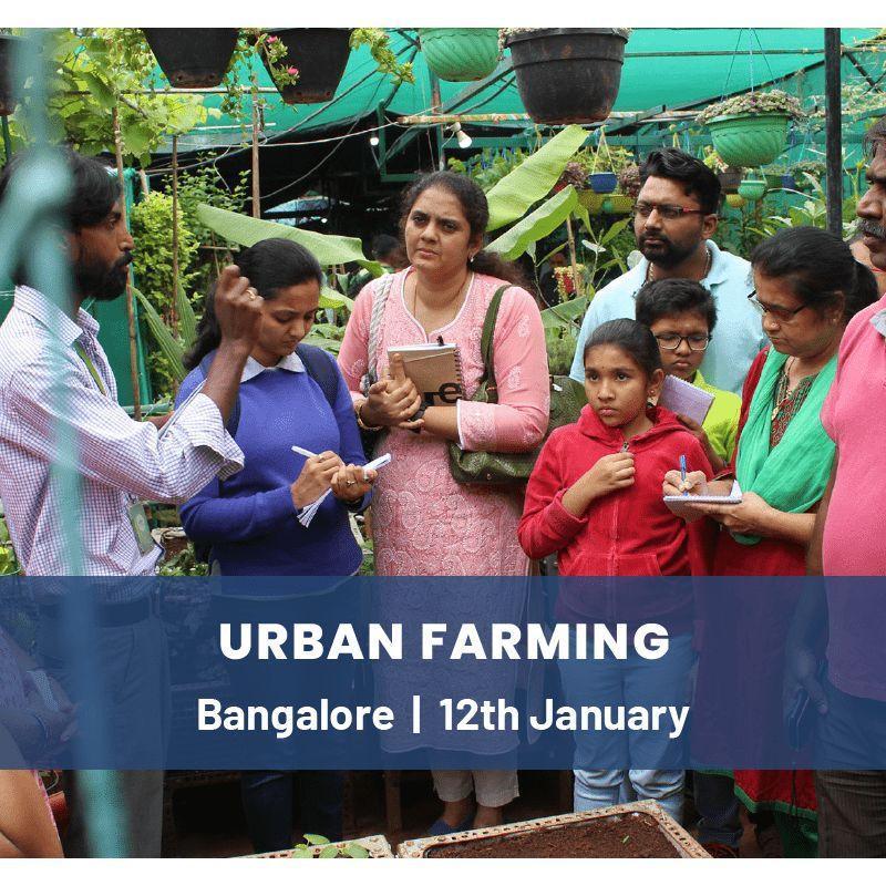 Urban Farming Advanced Workshop