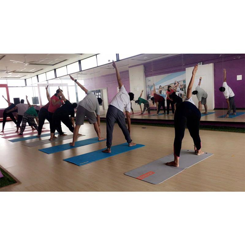 Online Yoga and Pranayama workshop