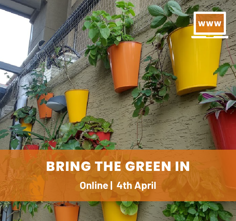 Indoor Plants Gardening Online Workshop